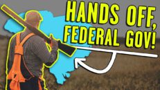 This genius bill GUARANTEES federal gov. can't infringe on 2nd Amendment rights
