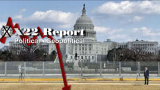 [DS] False Flag In DC Used To Protect Themselves, Panic, Flynn, It Will Happen Be Patient - X22 Report Ep. 2419b