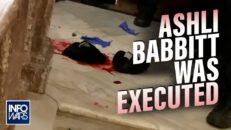 Proof: Ashli Babbitt Was Executed - Stew Peters