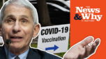 'GET OVER IT': Fauci's Advice for the Unvaccinated - News and Why It Matters