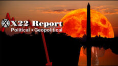 X22 Report Ep.2582b - Hunters Become Prey, Timing Is Everything,Freedom Of Information [Truth] = END