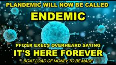 GET READY FOR THE ENDEMIC? PFIZER EXECS CAUGHT SAYING 'THIS WILL NEVER END'. IT'S ALL ABOUT PROFIT
