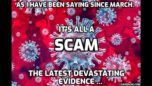 """WOW! 12 Month extensive study of official documents shows that NO """"VIRUS"""" EXISTS"""