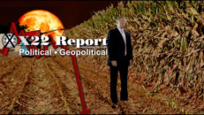 Ep. 2600b - Transparency & Prosecution Is The Way Forward, Truth Works, Harvest